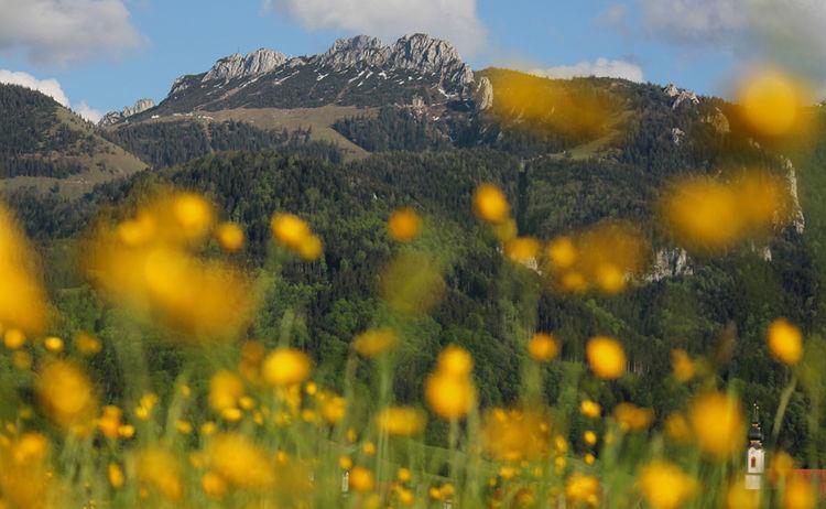 Aschau Im Chiemgau Kampenwand Massiv Copyright H Reiter Web