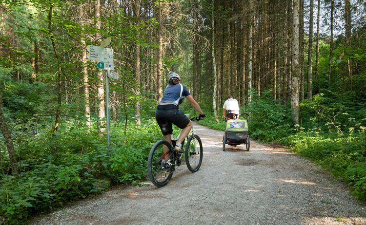 Radeln Wald Fotograph Kees Van Surksum Copyright Kur Und Tourismusbuero Oy Mittelberg Web