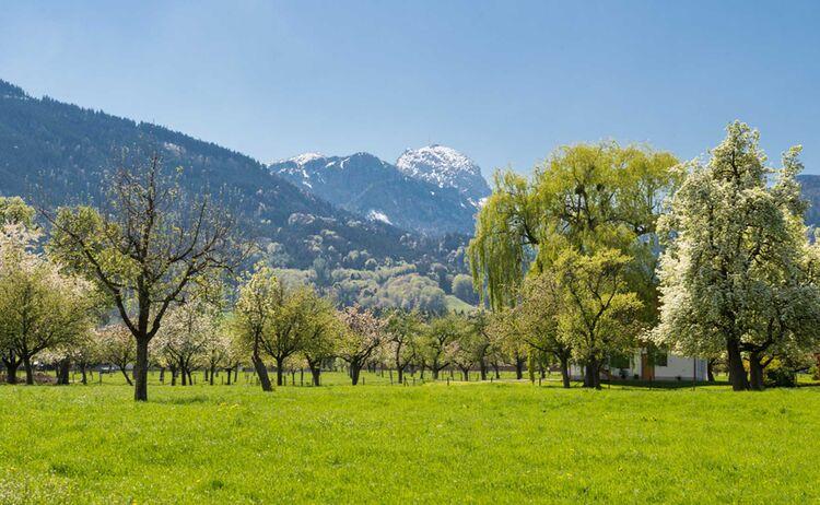 Blick auf den Wendelstein von Bad Feilnbach aus © Chiemsee-Alpenland Tourismus