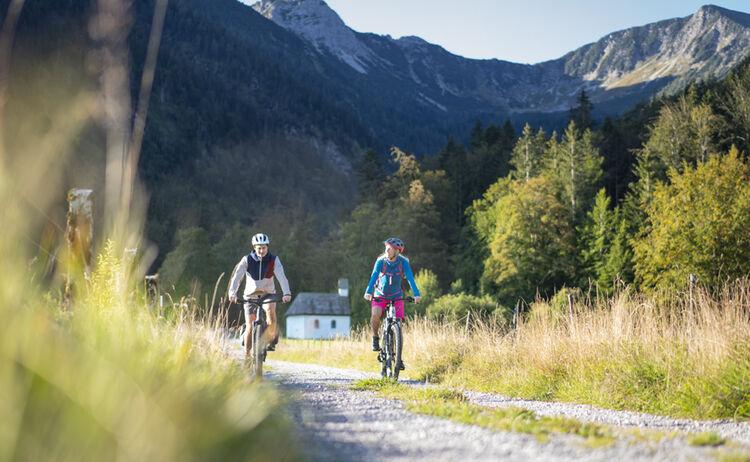 Bodensee-Königssee Radweg Landschaft 3