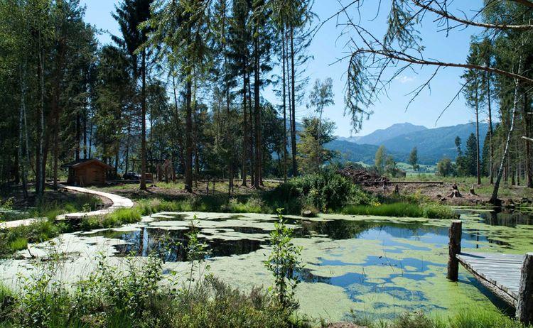 Das Moorerlebnis Sterntaler Filze In Bad Feilnbach 1