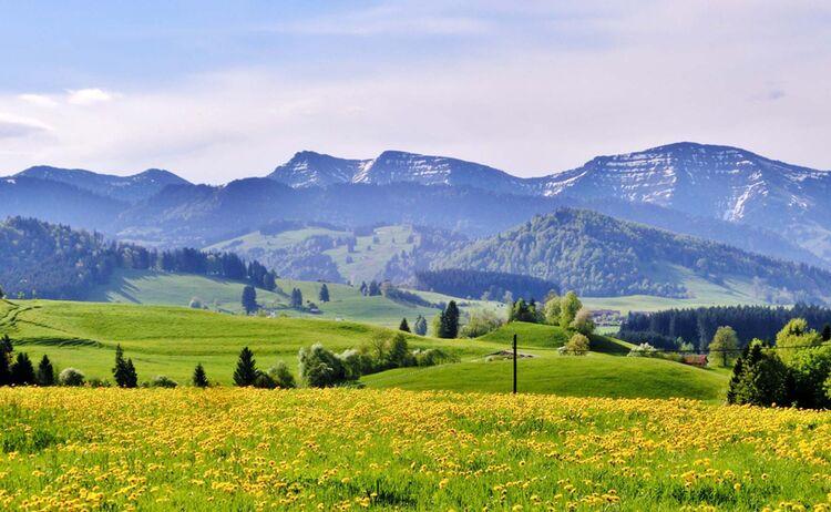 Radfahren entlang der Nagelfluhkette - Bild: Westallgäu Tourismus e. V.
